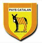 payscat9.JPG