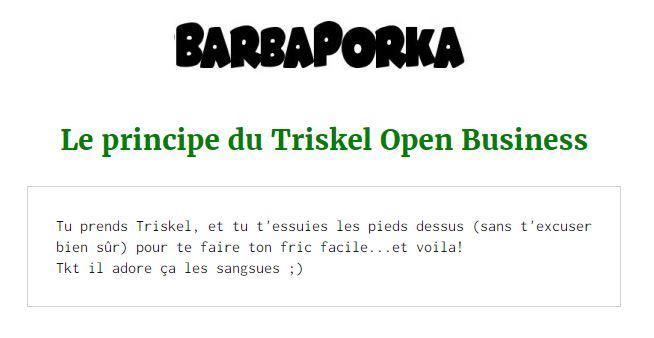 pdf-triskel-libreantenne-.JPG